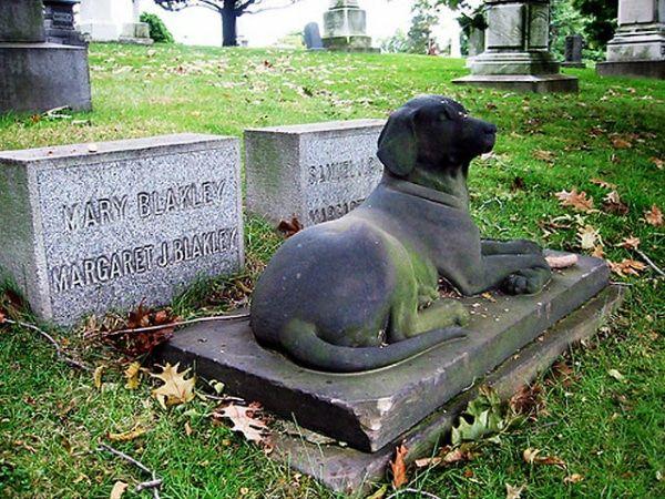 cementerio para mascotas en Vallarta